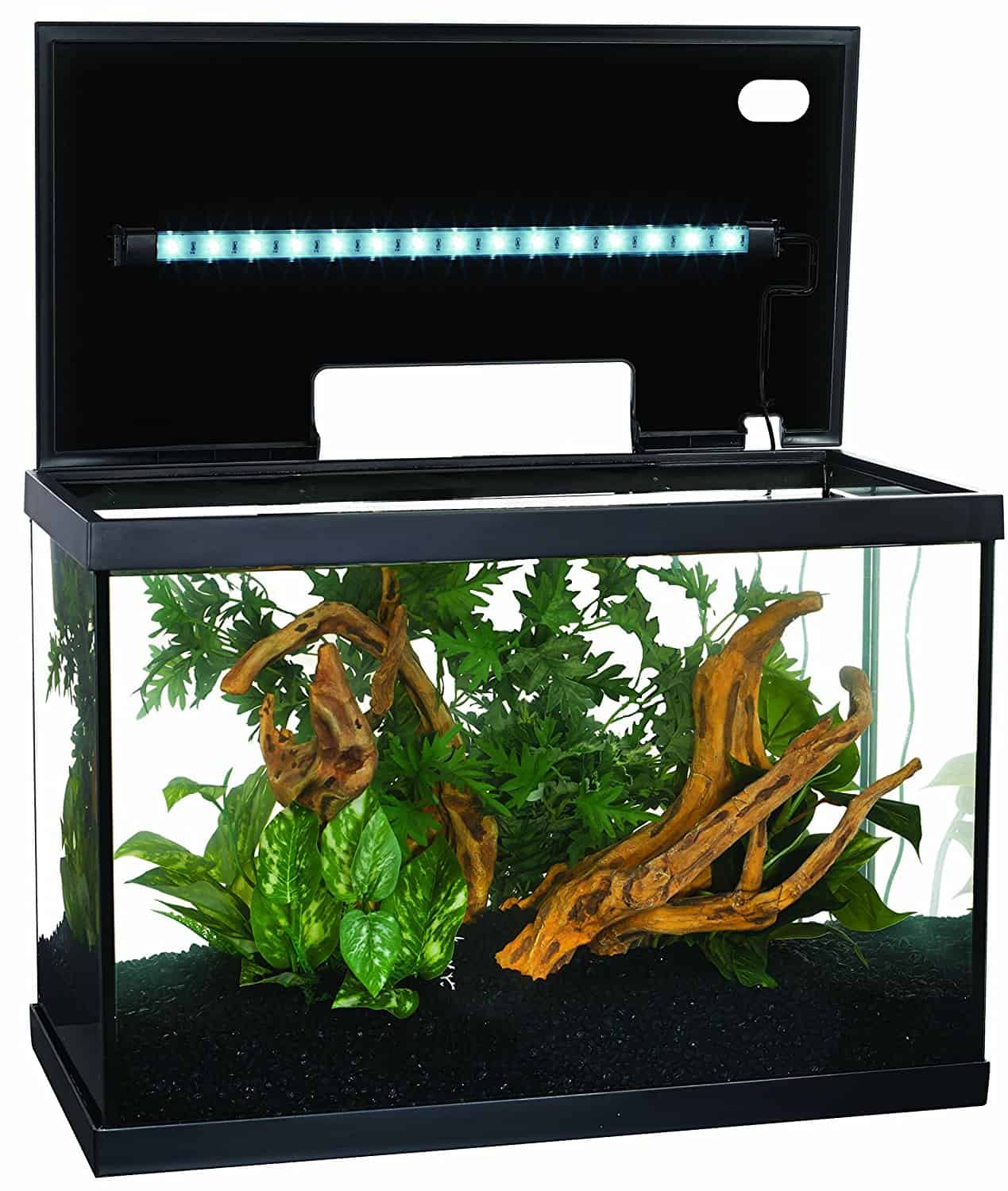 Marina-10-Gallon-Aquarium-Kit - Aquariums at Home 10 Gallon Home Aquariums
