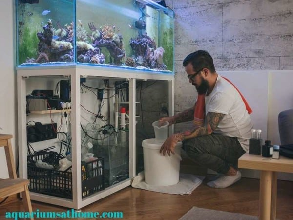 cleaning a reef tank